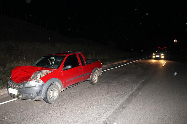 Carro fica destruído e animal morre em acidente na MG-434