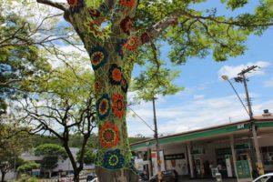 Árvores da Praça Acrísio Alvarenga ganham decoração em crochê